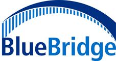 BlueBridge Networks logo