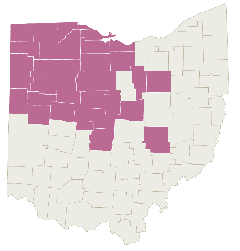 Graphic: Ohio map with the Northwest Counties highlighted