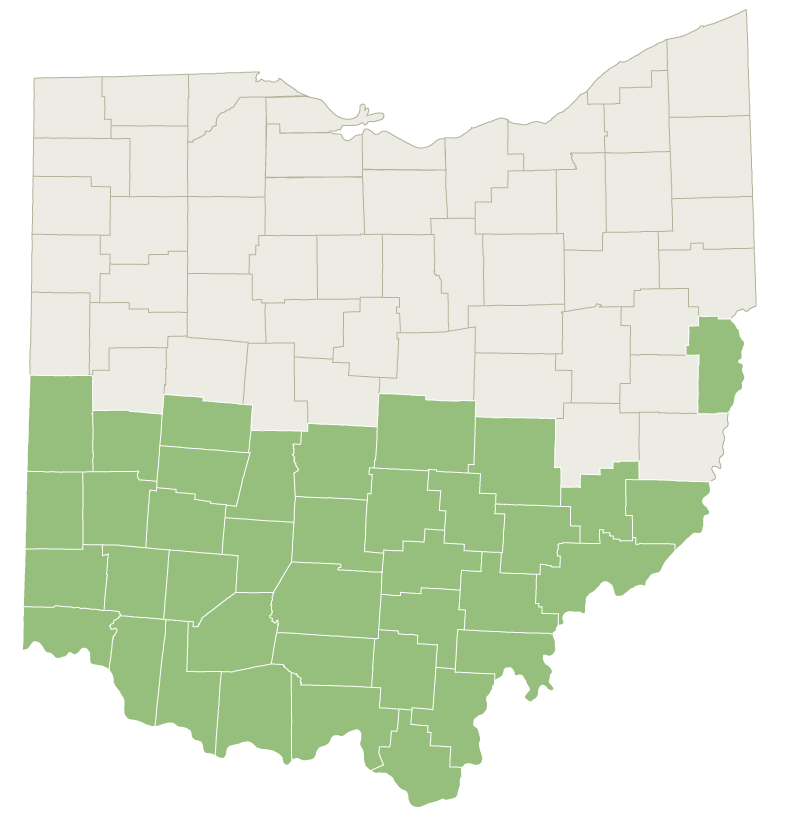 Graphic: Ohio map with the Southern Counties highlighted